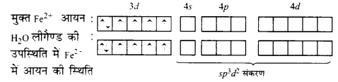 UP Board Solutions for Class 12 Chemistry Chapter 8 The d and f Block Elements image 17