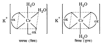 UP Board Solutions for Class 12 Chemistry Chapter 9 Coordination Compounds image 1