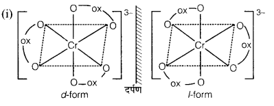 UP Board Solutions for Class 12 Chemistry Chapter 9 Coordination Compounds image 12
