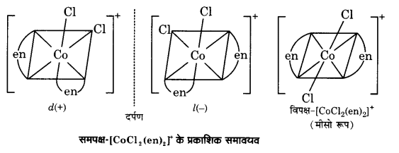 UP Board Solutions for Class 12 Chemistry Chapter 9 Coordination Compounds image 14