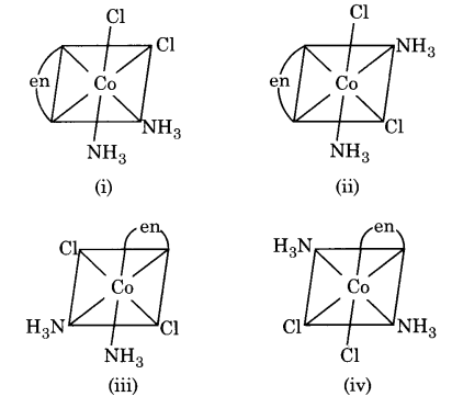 UP Board Solutions for Class 12 Chemistry Chapter 9 Coordination Compounds image 16