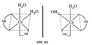 UP Board Solutions for Class 12 Chemistry Chapter 9 Coordination Compounds image 2
