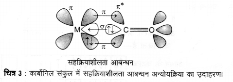 UP Board Solutions for Class 12 Chemistry Chapter 9 Coordination Compounds image 28