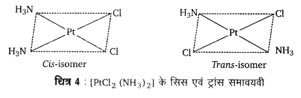 UP Board Solutions for Class 12 Chemistry Chapter 9 Coordination Compounds image 37