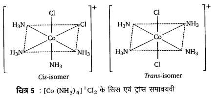 UP Board Solutions for Class 12 Chemistry Chapter 9 Coordination Compounds image 38