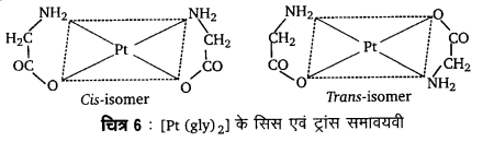 UP Board Solutions for Class 12 Chemistry Chapter 9 Coordination Compounds image 39