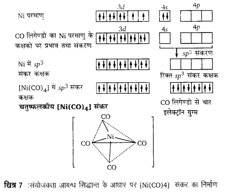 UP Board Solutions for Class 12 Chemistry Chapter 9 Coordination Compounds image 40
