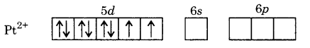 UP Board Solutions for Class 12 Chemistry Chapter 9 Coordination Compounds image 7