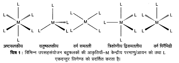UP Board Solutions for Class 12 Chemistry Chapter 9 Coordination Compounds image 9