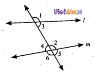 UP Board Solutions for Class 6 Maths Chapter 9 लम्ब और समान्तर रेखाएँ 13