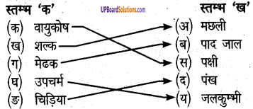 UP Board Solutions for Class 6 Science Chapter 7जीवों में अनुकूलन img-1