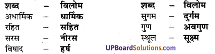 UP Board Solutions for Class 7 Hindi Chapter 2 राजधर्म (मंजरी) image - 3