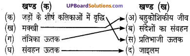 UP Board Solutions for Class 8 Science Chapter 6कोशिका से अंग तंत्र तक img-1