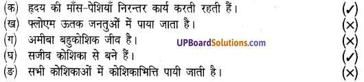 UP Board Solutions for Class 8 Science Chapter 6कोशिका से अंग तंत्र तक img-2