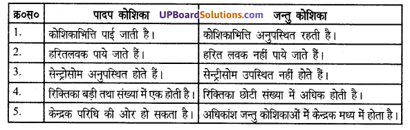 UP Board Solutions for Class 8 Science Chapter 6कोशिका से अंग तंत्र तक img-3