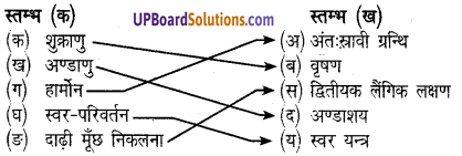 UP Board Solutions for Class 8 Science Chapter 8किशोरावस्थाimg-2