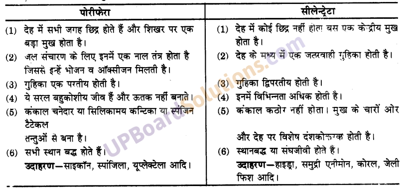UP Board Solutions for Class 9 Science Chapter 7 Diversity in Living Organisms image - 1