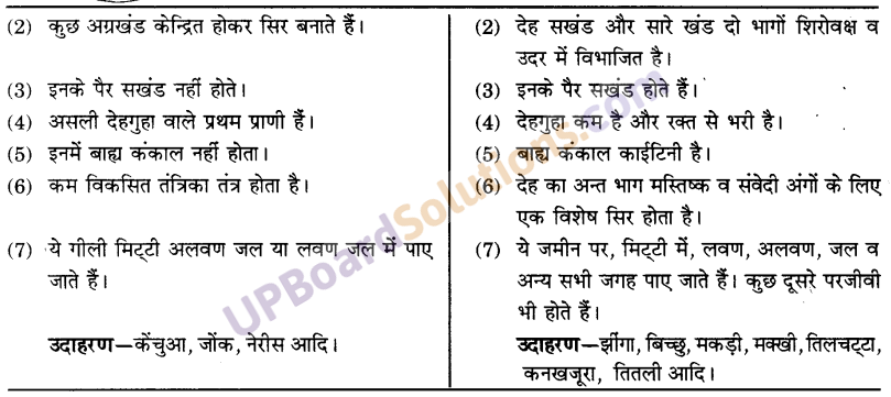 UP Board Solutions for Class 9 Science Chapter 7 Diversity in Living Organisms image - 3