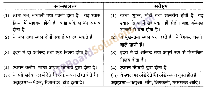 UP Board Solutions for Class 9 Science Chapter 7 Diversity in Living Organisms image - 4