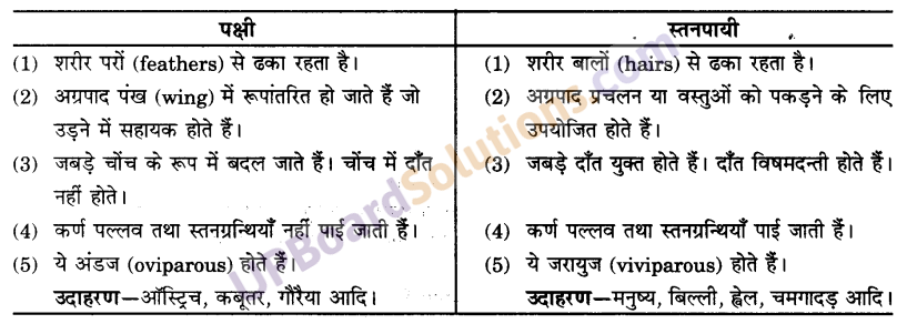 UP Board Solutions for Class 9 Science Chapter 7 Diversity in Living Organisms image - 5