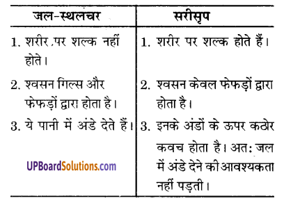 UP Board Solutions for Class 9 Science Chapter 7 Diversity in Living Organisms image - 6