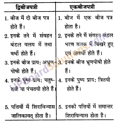 UP Board Solutions for Class 9 Science Chapter 7 Diversity in Living Organisms image - 7